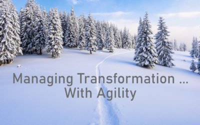 Managing Transformation…With Agility.